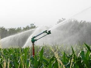 impianto-di-irrigazione-in-campo-di-mais.jpg