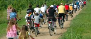 biciclettata-890x395.jpg