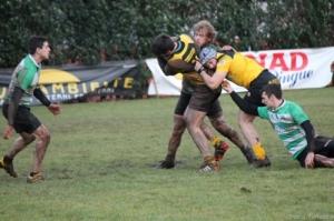 rugby.jpeg