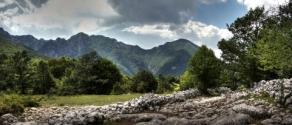parco-nazionale-dabruzzo-46355806-f2f3-4474-99cc-7ce575169400.jpg
