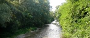 fiume liri.JPG