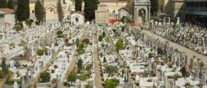 Cimitero_della_misericordia_di_viareggio_14.JPG