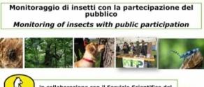 monitoraggio-insetti-PNALM.jpg
