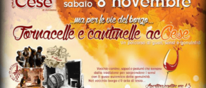 Fornacelle-e-cantinelle-cese-dei-marsi-2014.png.pagespeed.ce.3hjyrM9lr_.png