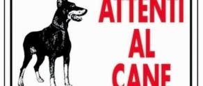 attenti al cane.jpg