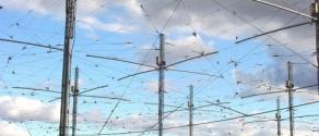 antenna selvaggia.jpg