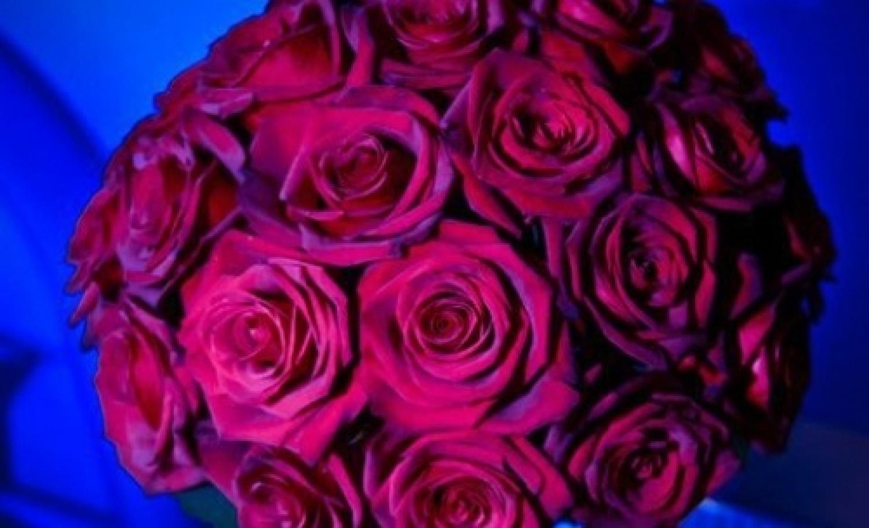 rose rosse.jpg
