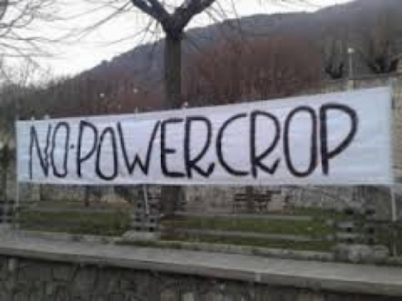 no powercrop.jpg