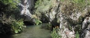 fiume giovenco.jpg