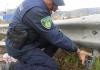 polizia locale 1.jpg