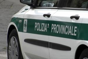 polizia provinciale.jpg