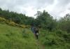 Cammino 2 (3).JPG