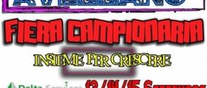 FIERA CAMP LOCANDINA.jpg