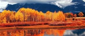 paesaggi_autunno_montagna.jpg