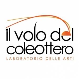 Coleottero_Arti_VerySmall.jpg