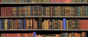 library6.jpg